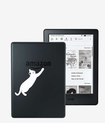 KINDLE DECAL 4BS